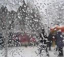 Погода в Туле 19 февраля: снег с дождем, ветер и до +6 градусов