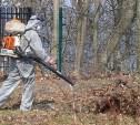 В Тульской области от клещей обработали более 20 га территорий