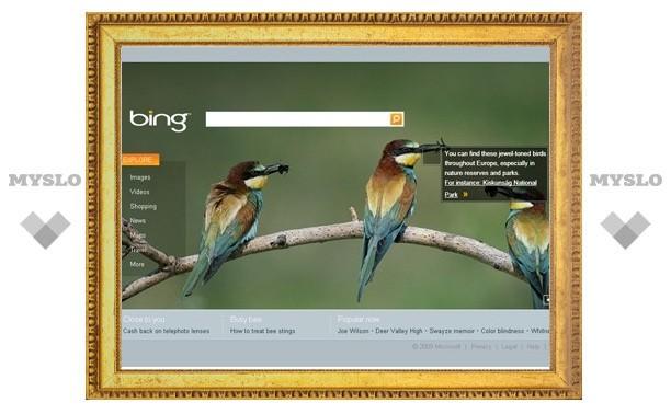 За три месяца поисковик Bing занял 10 процентов рынка