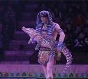 В Тульскую область не пустили цирковых животных без документов