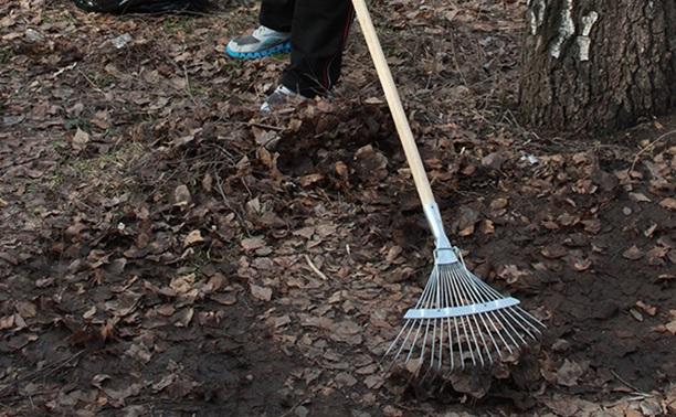 Мэр Тулы разработал правила уборки для всей области