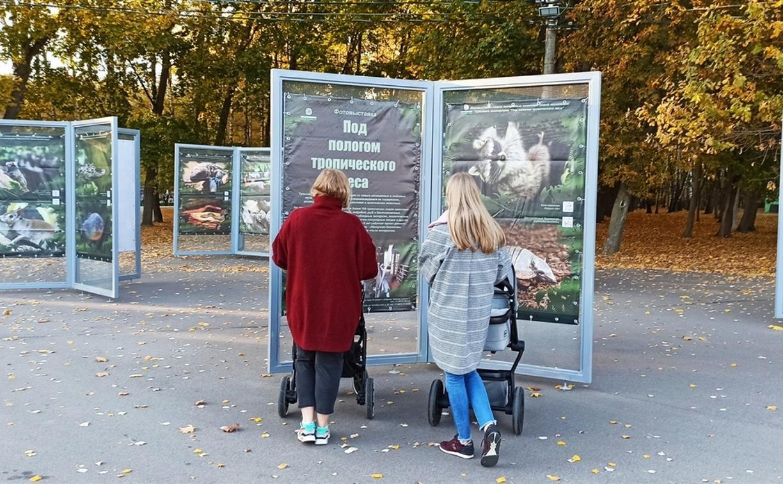В Белоусовском парке Тулы открылась «тропическая» фотовыставка