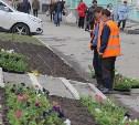 В Туле продолжают высаживать цветы