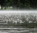 Погода в Туле 14 июля: снова ветер, дожди и грозы