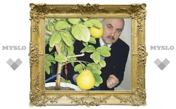 Туляк выращивает гигантские лимоны
