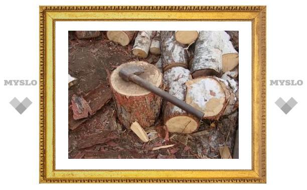 Туляки воруют лес, чтобы обогреть дома