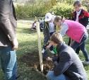 Юные тульские лесоводы посадили деревья в «Орлёнке»