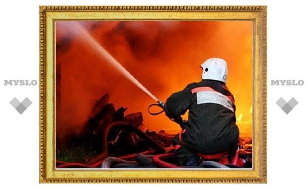 Под Тулой заживо сгорели два человека