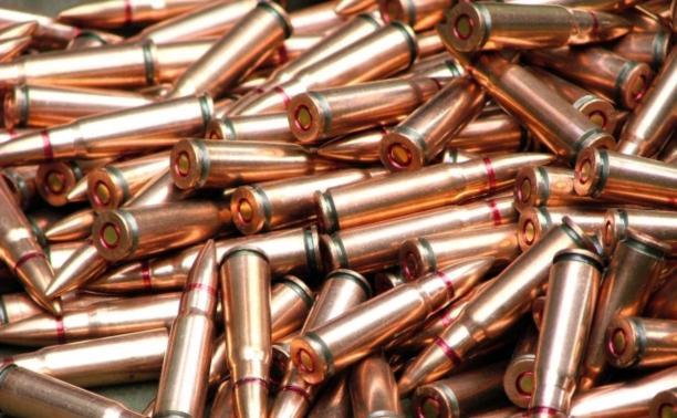 Туляка подозревают в незаконном хранении оружия