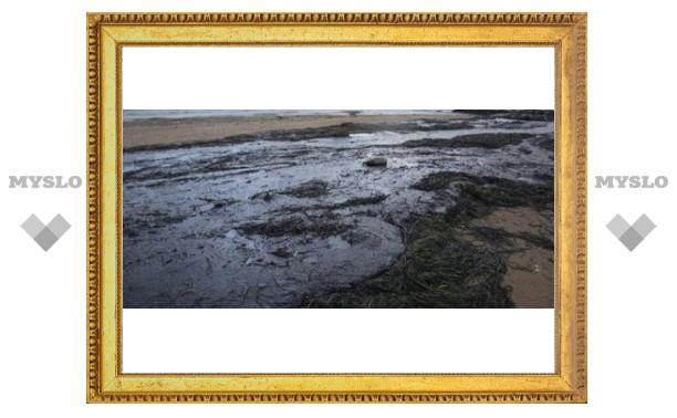 Под Тулой обнаружили нефтяные болота