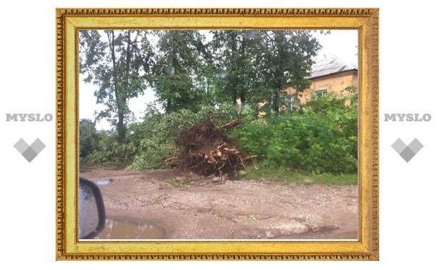 Алексин накрыло ураганом