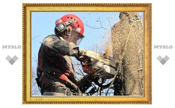 В убийстве пенсионерки упавшим деревом виновен рабочий