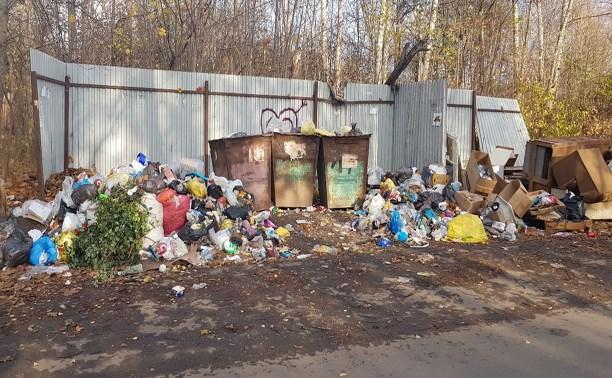 Власти Щёкино прокомментировали невывоз мусора в городе
