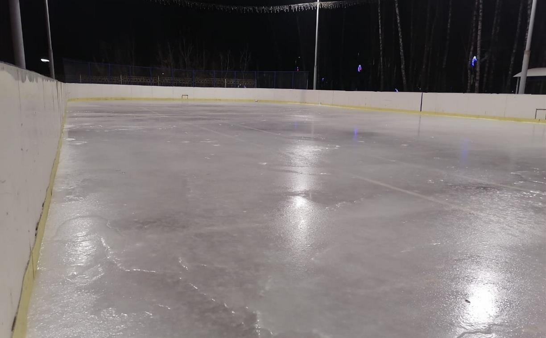 В Центральном парке Тулы открылся ледовый каток