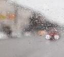В Тульской области объявлен жёлтый уровень погодной опасности из-за дождя