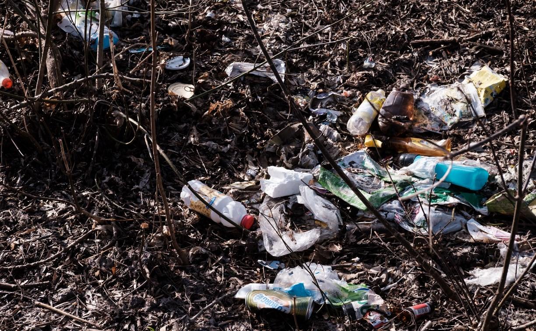 Туляки жалуются на стихийную свалку возле школьного стадиона