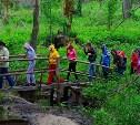 В Новомосковске для дошкольников сделают «экологическую тропу»