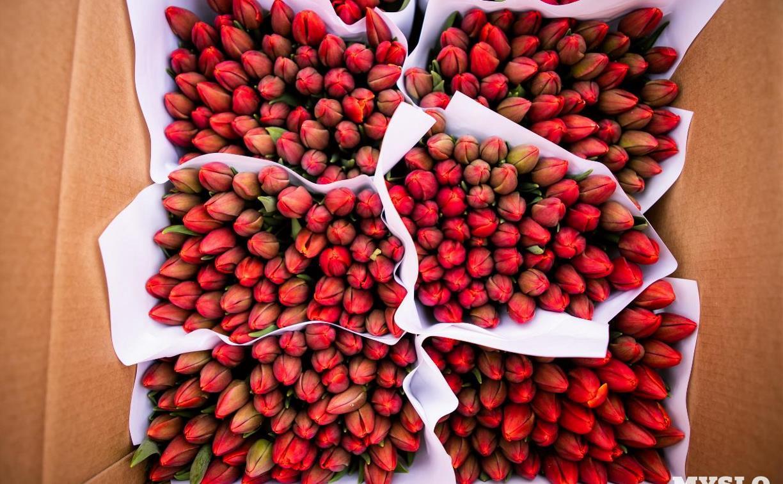5 марта в Туле откроются ярмарки по продаже цветов