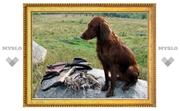 В Тульской области пройдут ежегодные состязания легавых собак