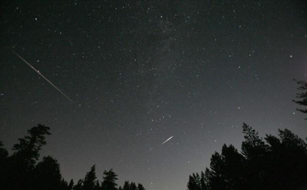 Туляки смогут увидеть самый яркий звездопад года