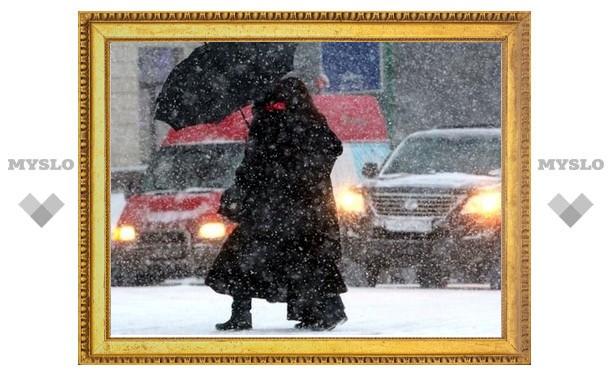 Тулу в ближайшее время завалит мокрым снегом?