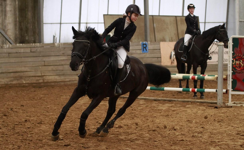 Красивые лошадки и наездницы: в Туле прошли соревнования по конкуру «Женский день»