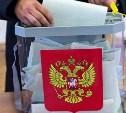 В территориальных избиркомах Тульской области закончилось досрочное голосование