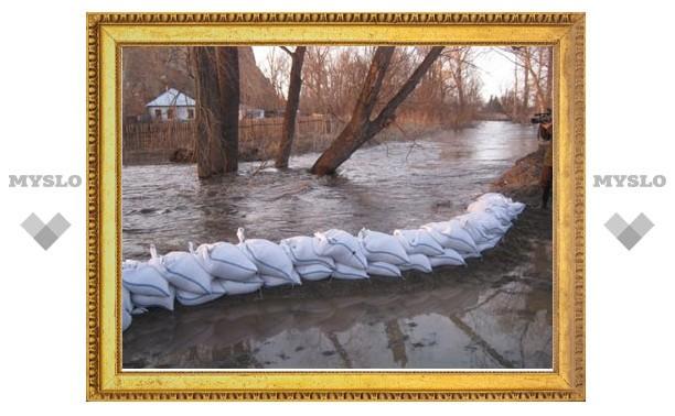 В Тульской области паводковые воды подтопили 9 мостов и 1 участок дороги