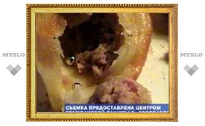 В Ярославле продавали пельмени с ртутью