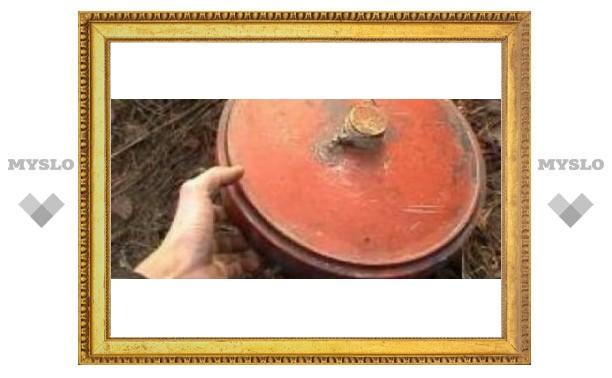 Под Тулой найдены мины