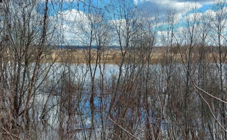 В Тульской области ищут тело утонувшего калужского пенсионера