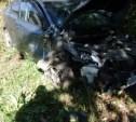 Под Тулой иномарка сбила на обочине грибников