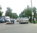 В Мясново автомобиль сбил лошадь