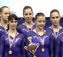 Тульские гимнастки стали чемпионками страны
