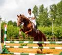 В Тульской области пройдёт первенство по конкуру