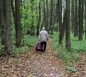 В Барсуках благоустроят лесопарковую зону