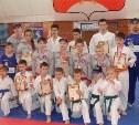 Тульские каратисты привезли 11 медалей из Серпухова