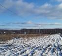 Житель Тульской области украл семь электрических столбов