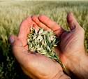 Тульским аграриям помогут материально
