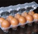 В Тёпло-Огарёвском районе расширят производство упаковки для яиц