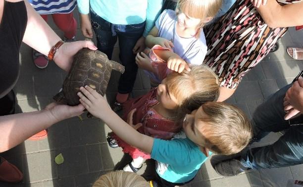 Тульский зооэкзотариум отметил день рождения