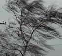 Тульское МЧС объявило экстренное метеопредупреждение на 30 и 31 января