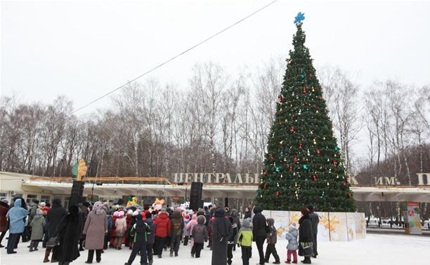 На площади Искусств открылась елка