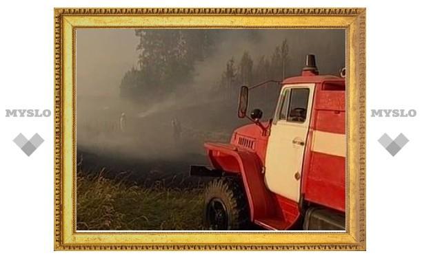 Площадь природных пожаров в РФ выросла за сутки в полтора раза