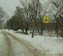 ОНФ добился от городских властей установки знака возле школы №59