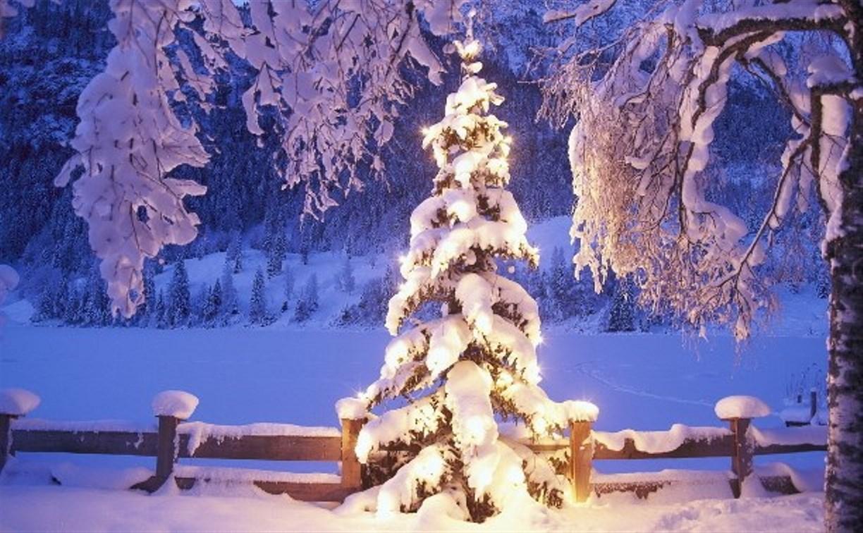 Роспотребнадзор советует встречать Новый год в России
