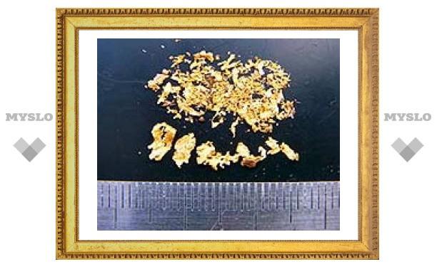 В Бурятии изъято 12 килограммов контрабандного золота