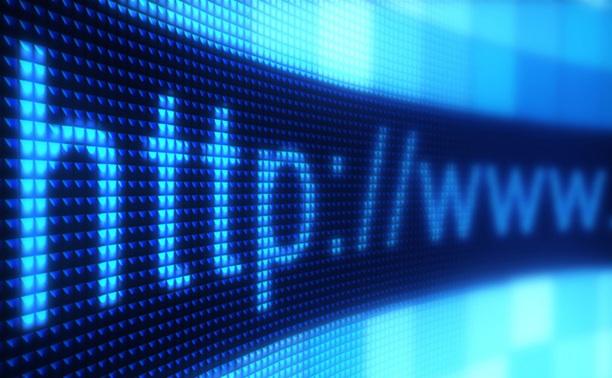 Тульские бизнесмены не доверяют интернету
