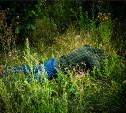 В Ясногорске задержали подозреваемого в убийстве местного жителя