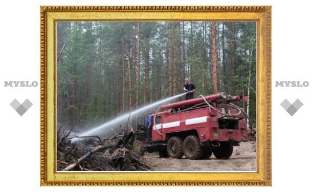 Число лесных пожаров в России за год сократилось на четверть